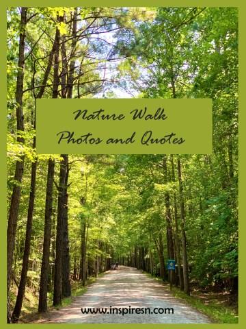 Nature walk - American Tobacco Trail