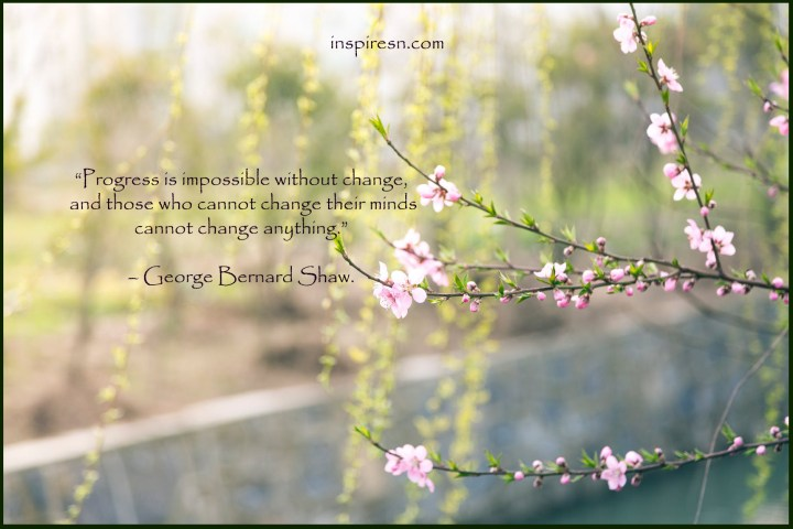 Without Change Progress is impossible - Inspirational quote on change