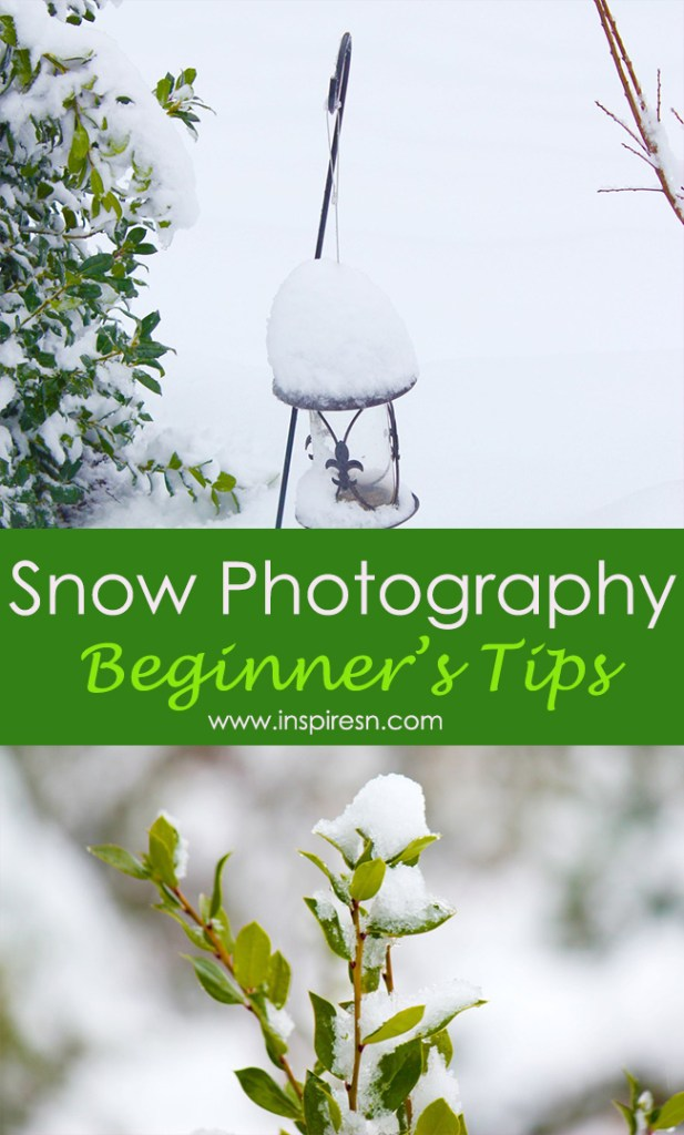 Snow Photography beginners tips