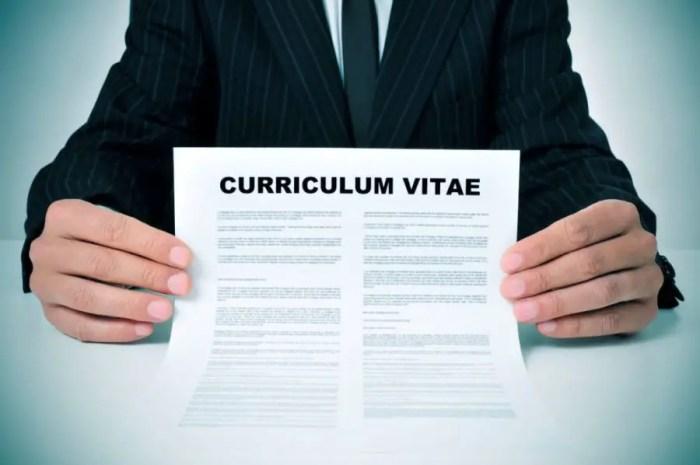 25 Contoh Cv Curriculum Vitae Lamaran Kerja Yang Menarik Kreatif
