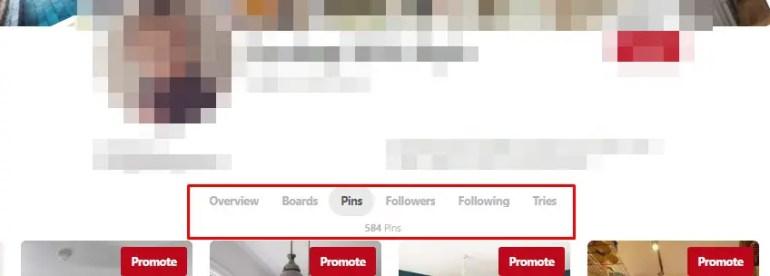 review viraltag untuk menjadwalkan Pin dan meningkatkan follower pinterest