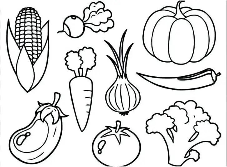 Pinterest Gambar Mewarnai Sayur Sayuran Wwwimagenesmicom