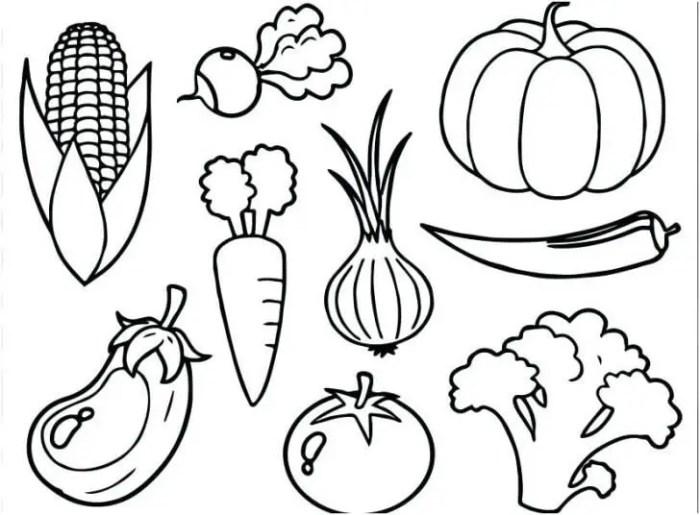 Gambar Mewarnai Sayuran Gambar Mewarnai