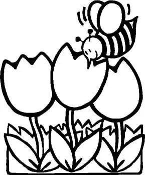 Mewarnai Gambar Bunga Tulip Gambar Gambar Mewarnai Bunga