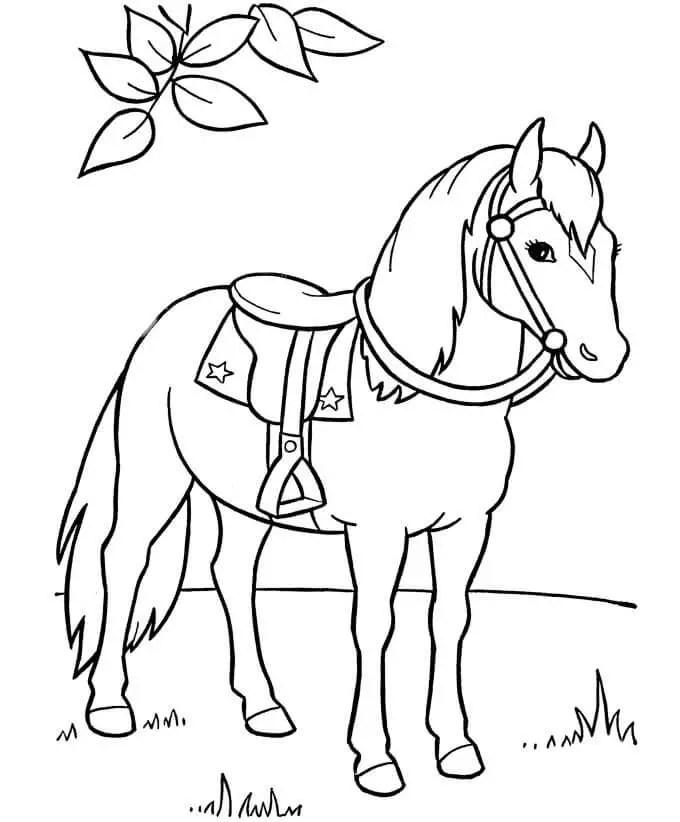 gambar mewarnai hewan kuda