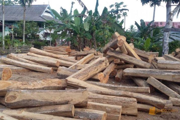 daerah penghasil kayu jati jawa timur