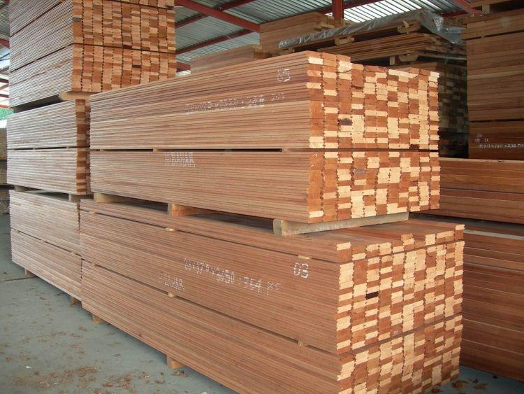 jenis jenis kayu di Indonesia kayu meranti