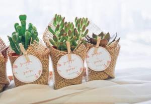Tips Memilih Souvenir Pernikahan + Rekomendasi Souvenir Pernikahan Murah, Souvenir Pernikahan Unik Terlengkap