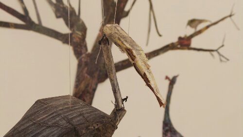 A close up of one of the birds from Thayer's sculpture