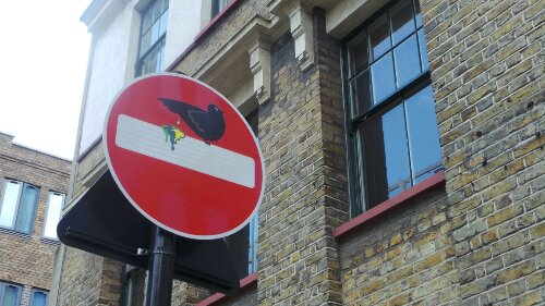A rude pigeon by Bell Lane
