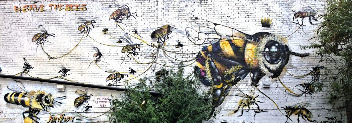 Louis Masai Jim Vision Save the Bees