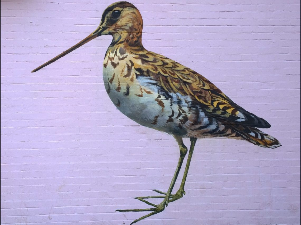 Painting of a snipe by ATM in Acton