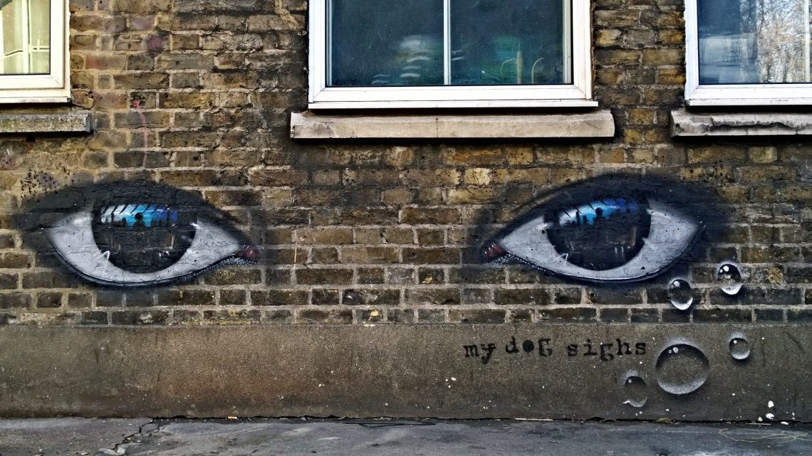 My Dog Sighs on Haven Street