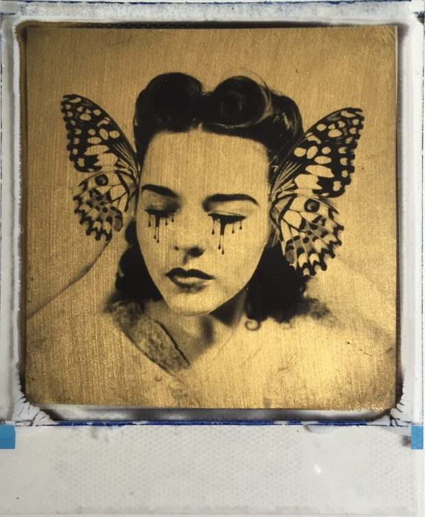 butterfly collector edition 50 £80