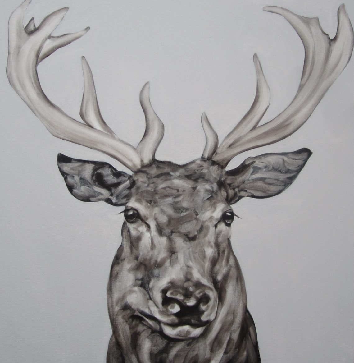 Abigail Reed Stag Head(poise 2)65x65cm