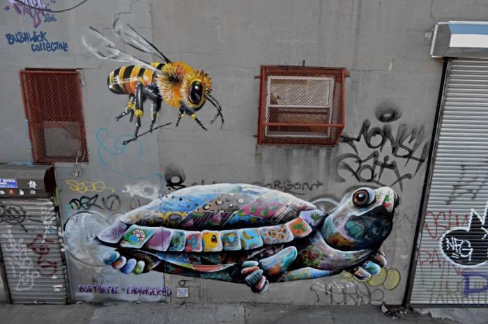 new-york-bog-turtle-louis-masai-4-urbanite