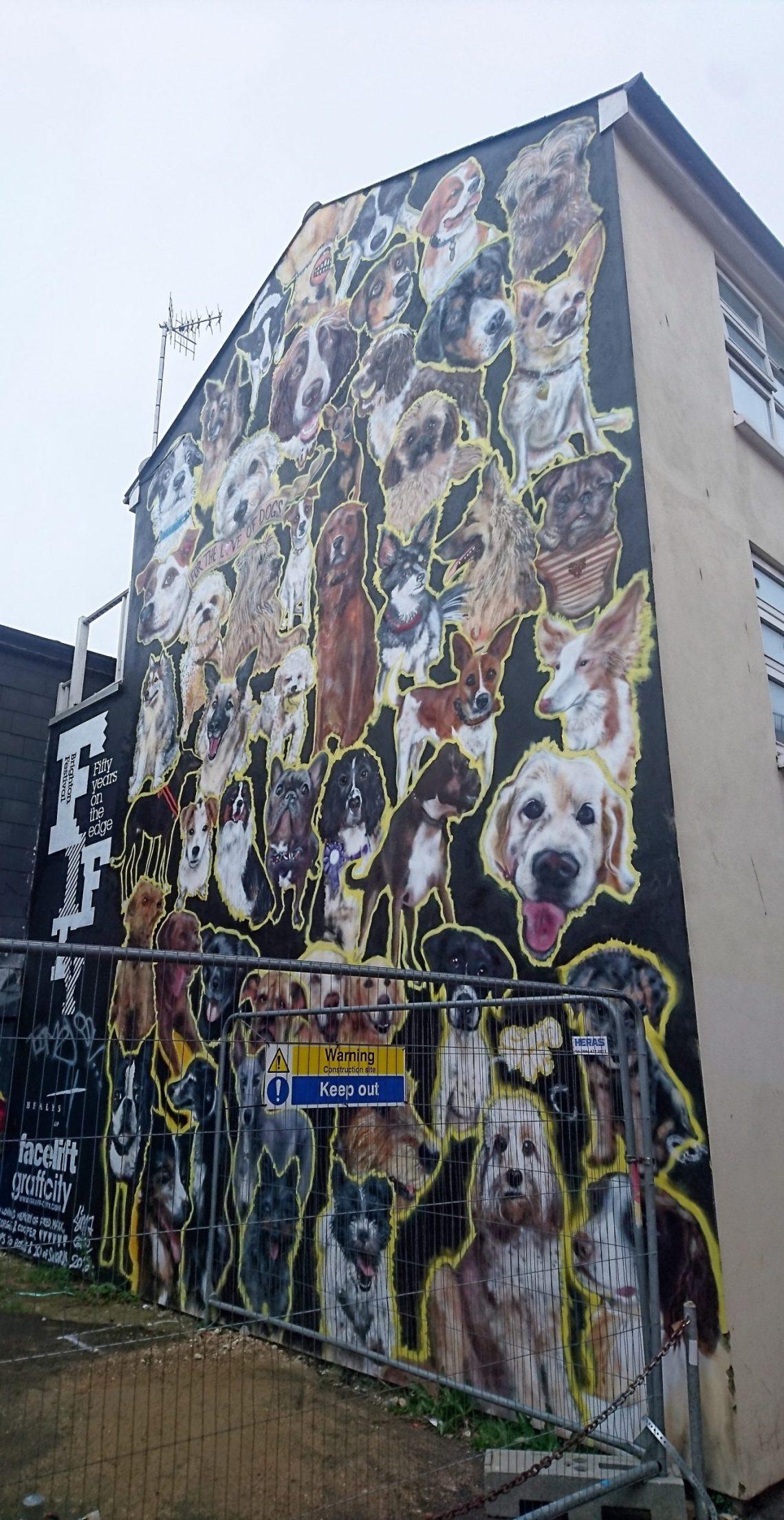brighton street art kensington street