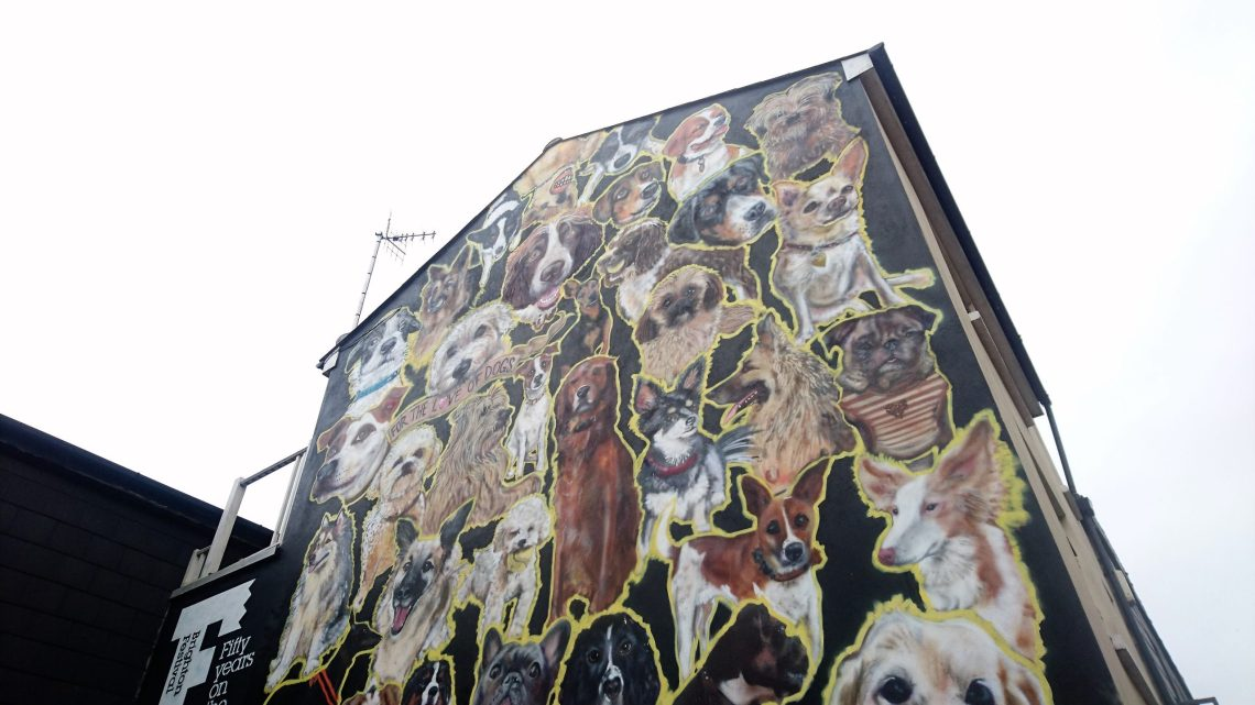 brighton street art kensington street sinna one