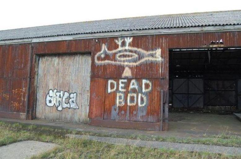 Dead Bod Pinterest