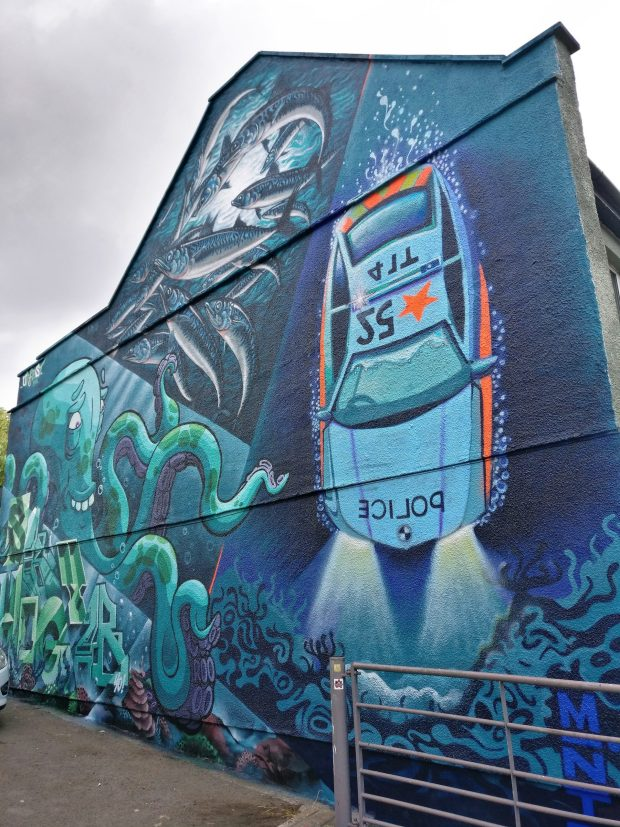 Roo, Sky High, Ali Hamish, Minto Upfest