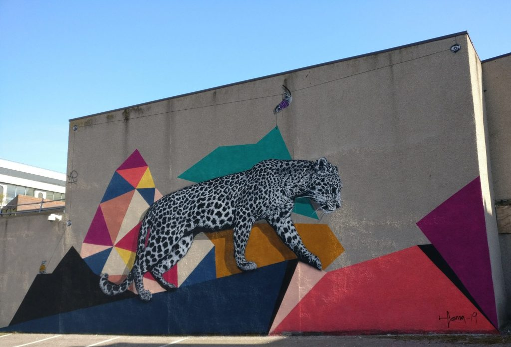 Leopard street art by Hama Woods in Aberdeen