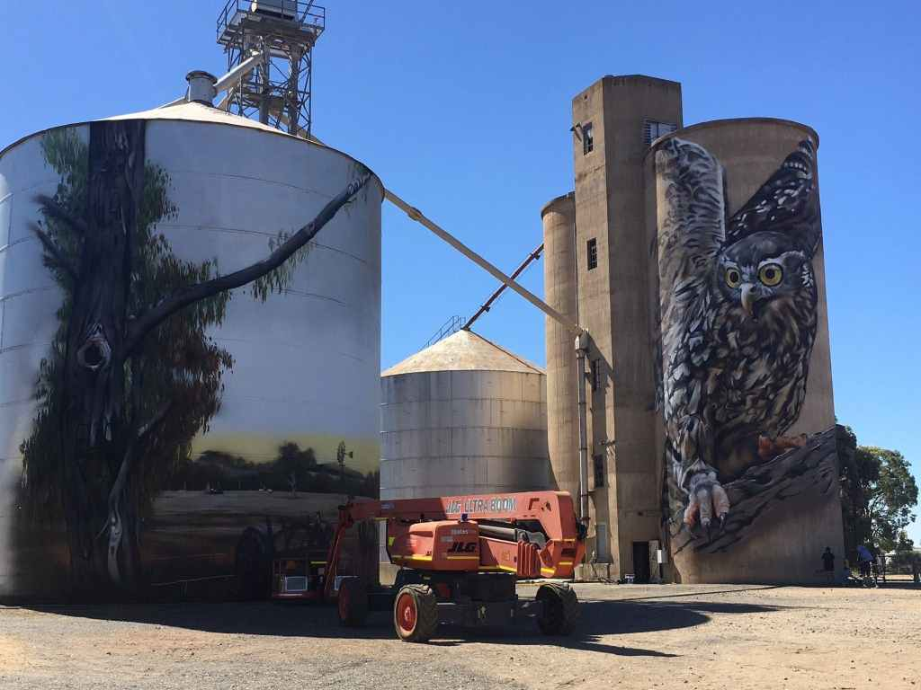 Barking owl silo art by Jimmy Dvate on the North East Victoria Silo Art Trail