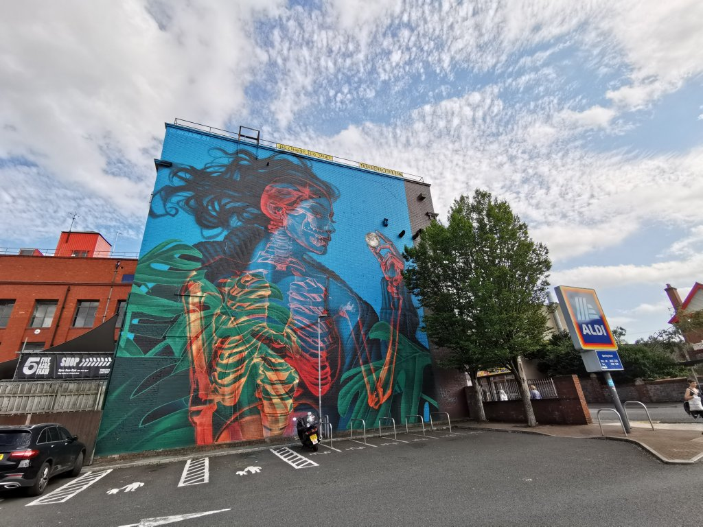Mural by Insane51 on the Tobacco Factory. His mural is the biggest of teh 75 walls in 75 days project