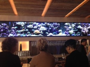 Reverie tv screens