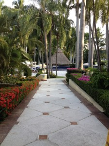 Inspiring Kitchen Casa Velas gardens