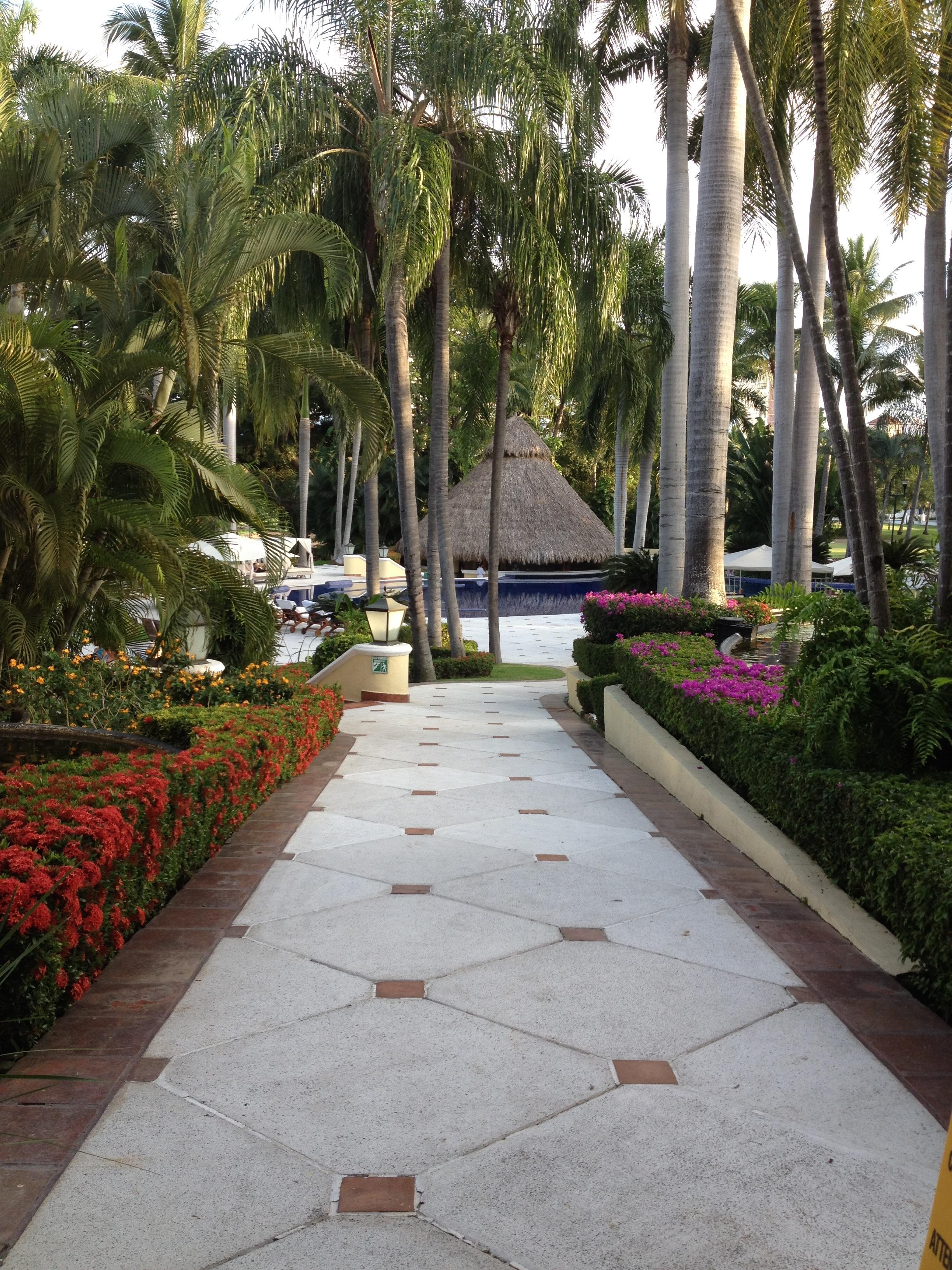 Inspiring Kitchen Casa Velas gardens dining