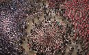 human-towers-catalonia-david-oliete-11