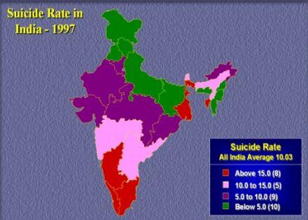 suicide rate11 26