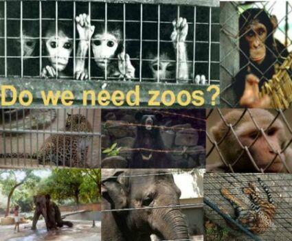 zoosinindia