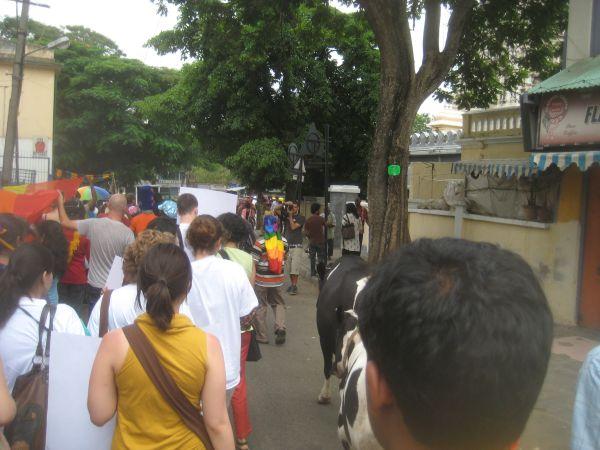 Bangalore_Gay_Pride_Parade_(30)
