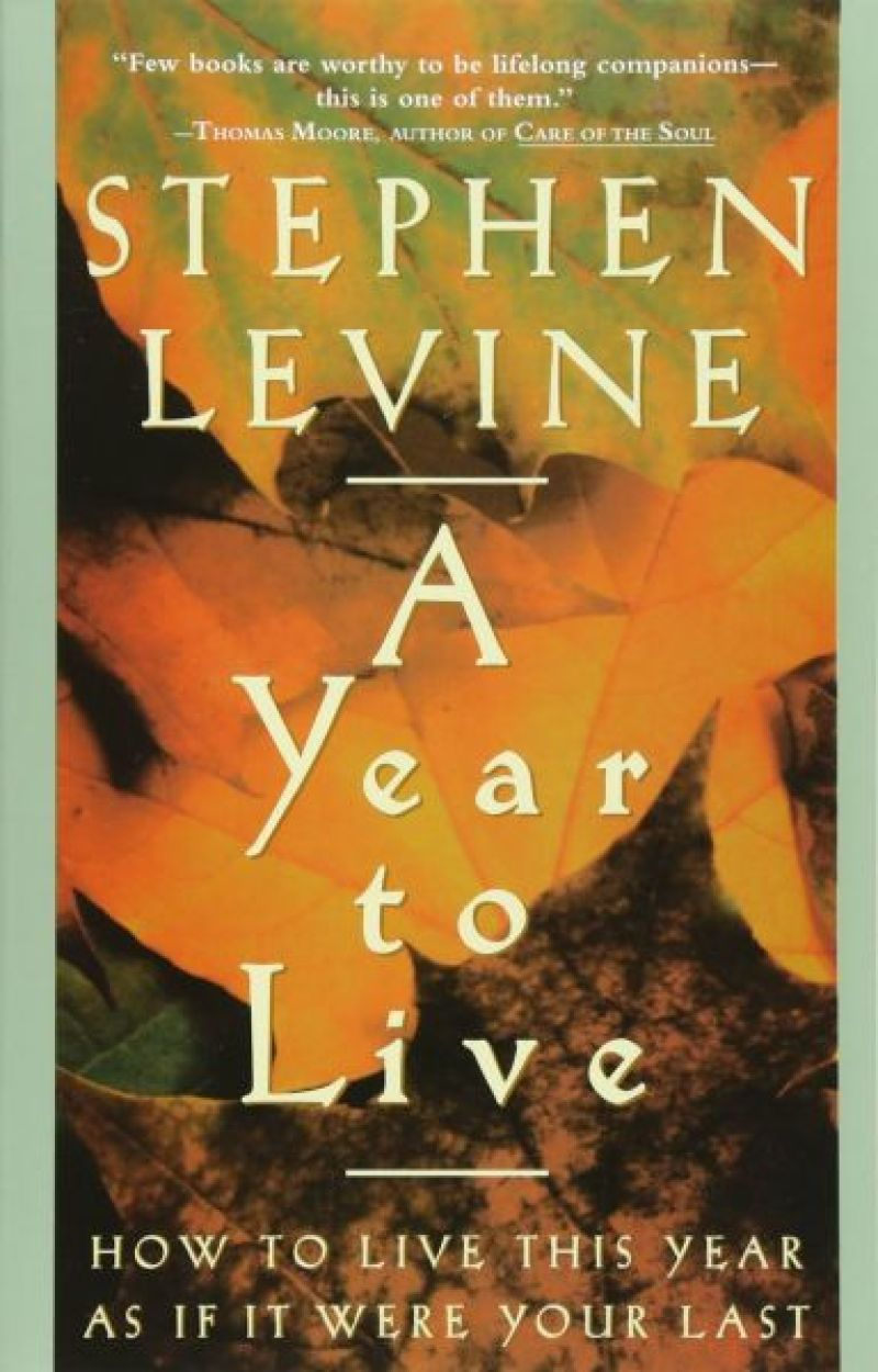 A year to live – Stephen Levine