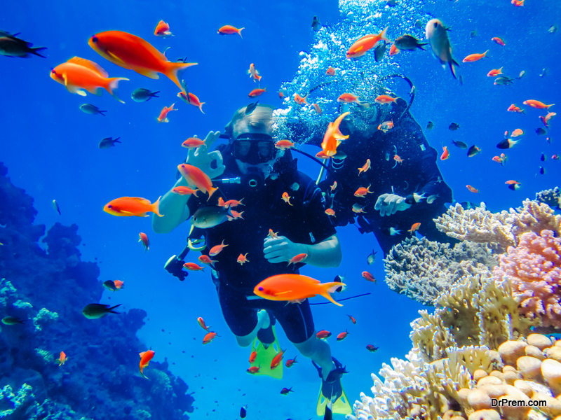 spend your days scuba diving off the coast of Jeddah
