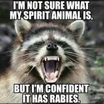 Top Best 17 Rabies Captions with Texts and Photos