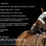 Top Best 25 Racehorses Captions with Texts and Photos
