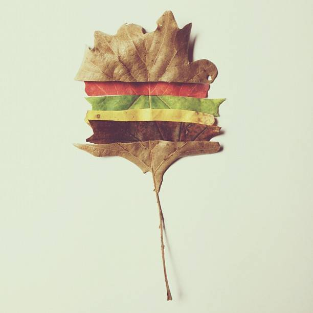 brock Davis - This Fell From The Cheeseburger Tree