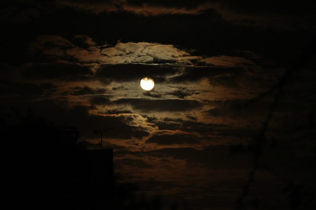 moon-in-the-night-sky
