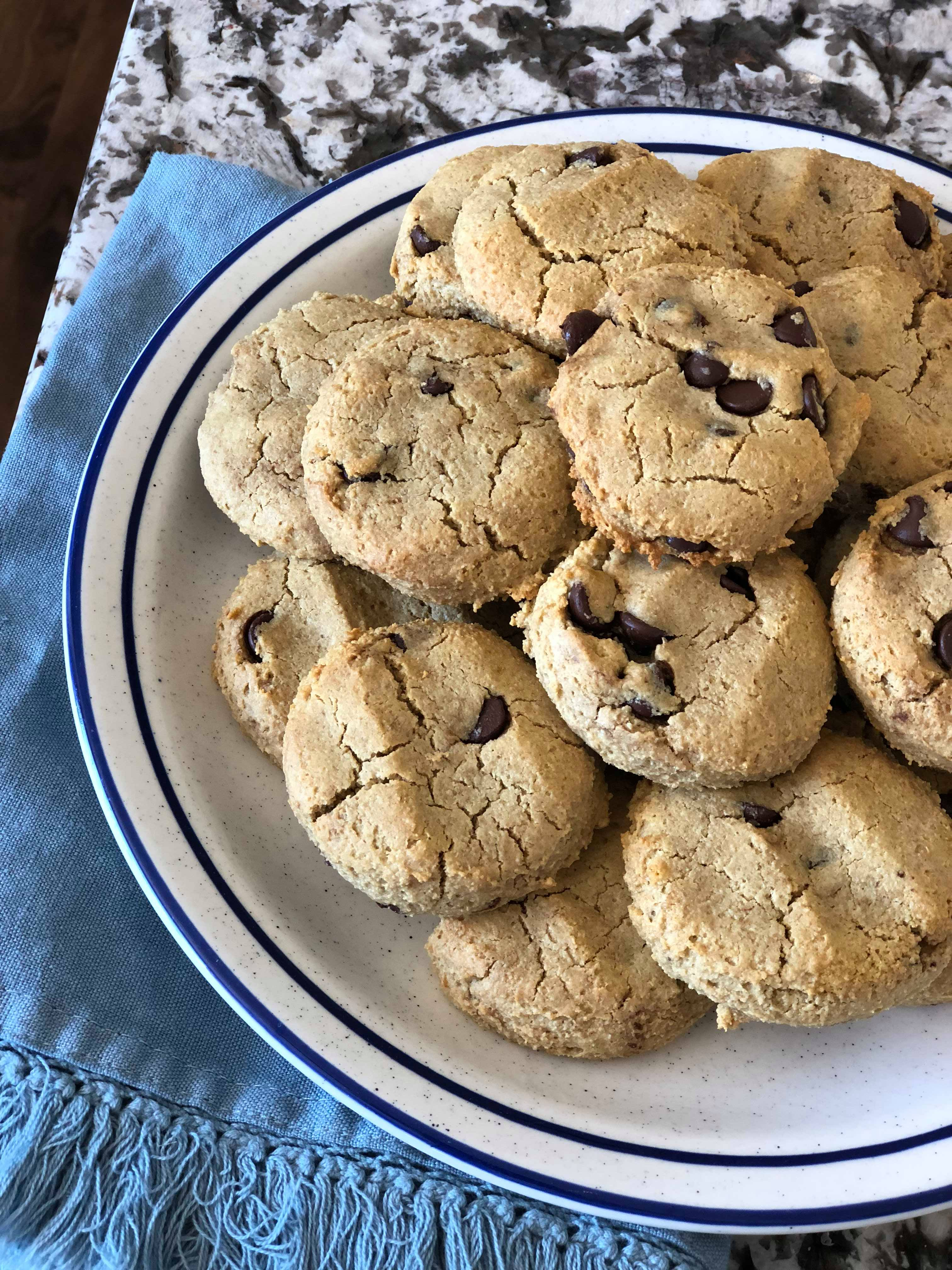 Lactation Cookies instantloss.com