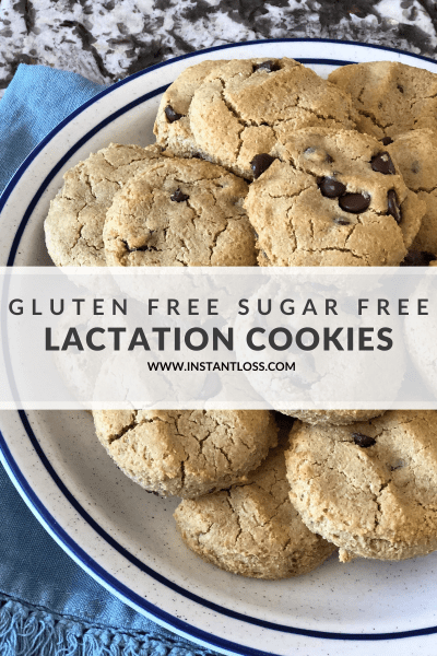 Gluten and Sugar Free Lactation Cookies instantloss.com