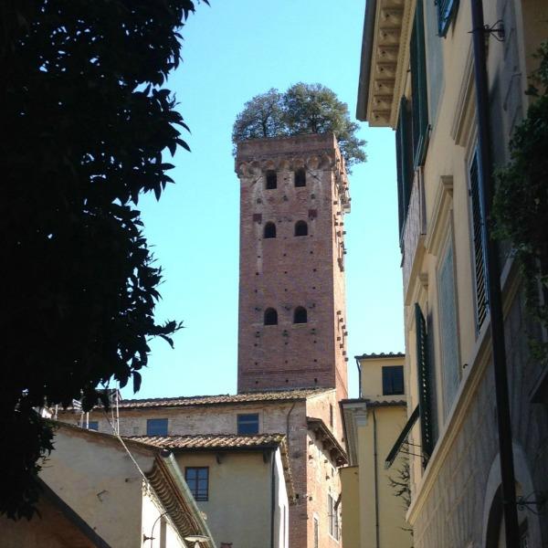 A Day Trip in Lucca, Torre Guinigi