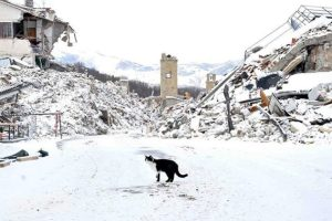 The snowfall which hit the earthquake areas in Central Italy on Instantly Italy