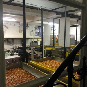 Oranges being candied at Romanengo Laboratory in Genova on Instantly Italy