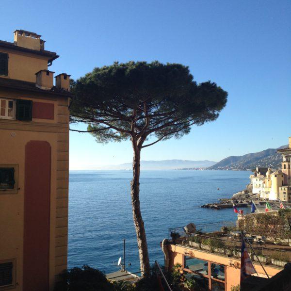 A view of the sea in Camogli, Liguria