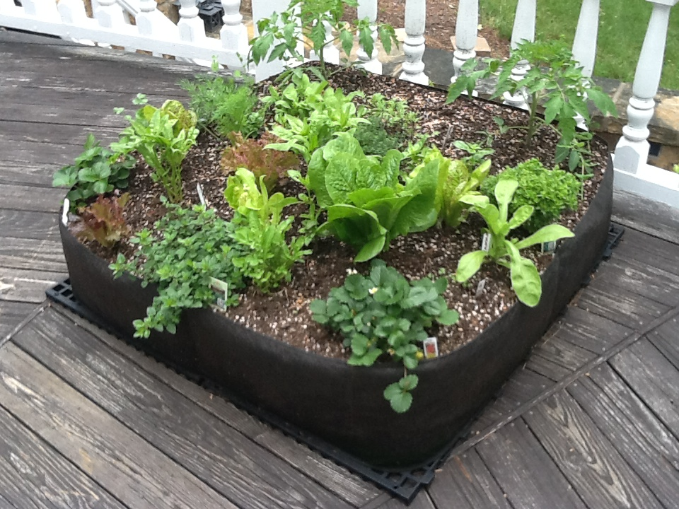 Awesome Fabric Raised Bed Research