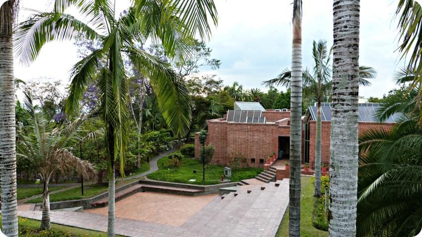 Jardin du Musée de l'Or d'Armenia orné de palmiers et d'un petit amphithéâtre