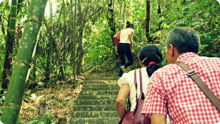 Charlène et les parents de Charles montant des escaliers entourés d'arbres au Parque de la Vida d'Armenia
