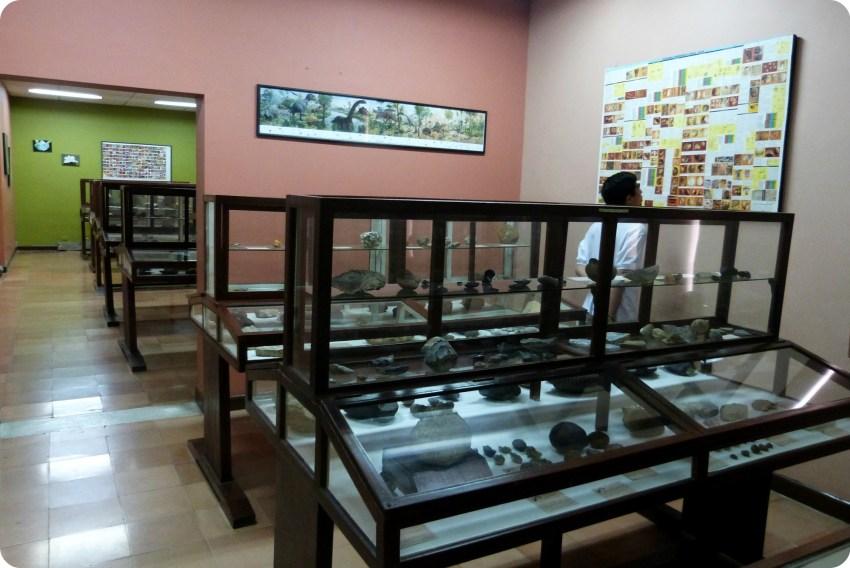 Salle du Musée d'histoire naturelle de Popayán